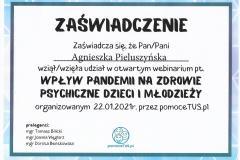 Wpływ-pandemii